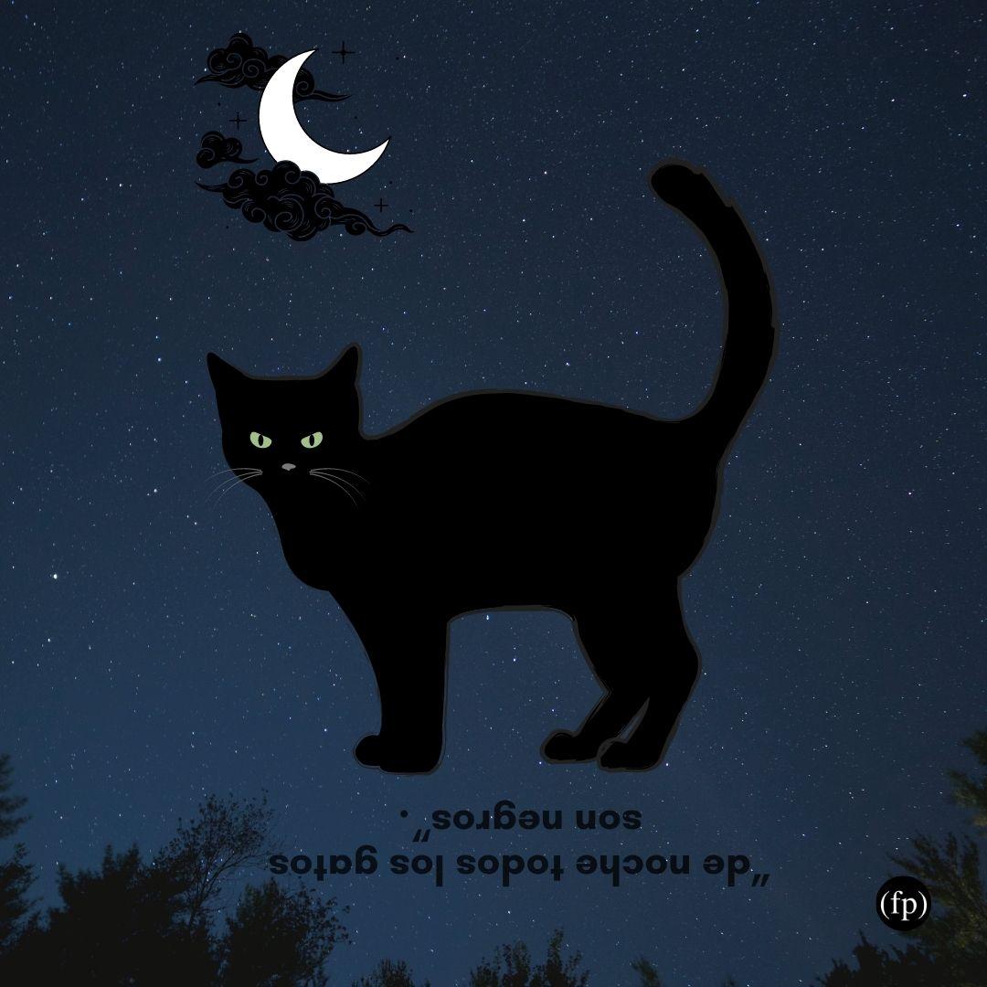 refran_gato_negro